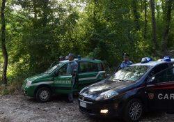 """Cusato Mutri. I Carabinieri della Forestale sequestrano un immobile inlocalità """"Fontana Stritto"""", di proprietà comunale ma dato in gestione ad un privato."""
