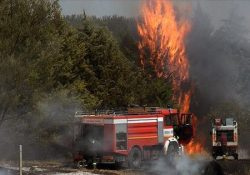 Telese Terme / Solopaca. Incendi nel Sannio, dal 17 luglio circa 1400 gli interventi dei pompieri per spegnere i roghi.
