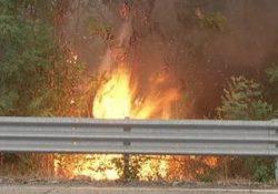 Filignano. Dà alle fiamme un cumulo di sterpaglie e rami secchi ma perde il controllo del fuoco: denunciato campano 60enne.