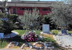 """ALIFE. Il Movimento per la Pace consegna all'Associazione nazionale """"Combattenti e Reduci"""", sezione di Piedimonte Matese, un ramoscello di ulivo, simbolo di Pace."""