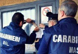 Pozzilli. Carabinieri del NAS in azione, tre denunce: chiuso un deposito di generi alimentari.