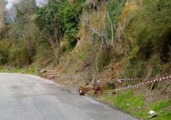 ROCCAMONFINA / MARZANO APPIO. Quasi un milione di euro per la manutenzione e l'ammodernamento della rete stradale provinciale.