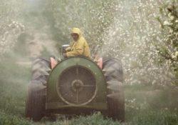 """Limatola. Adesione alla rete European Pesticide Free Towns Network"""", obiettivo dichiarato: lotta ai pesticidi."""