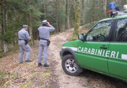 """Pesche / Montedimezzo / Collemeluccio. Reparto Carabinieri Biodiversità in azione per una """"Pasquetta sicura"""": numerosissimi in visita alle riverse naturali."""