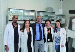 Pozzilli. Premio internazionale assegnato alla ricerca del Neuromed in collaborazione con l'Università di Pisa.