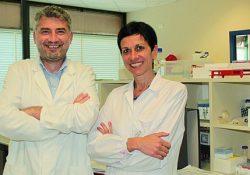 Pozzilli. Dagli studi del Neuromed una nuova molecola per curare la malattia di Huntington: passo avanti nella ricerca scientifica.