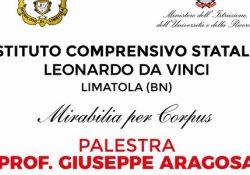 """Limatola. Venerdì 1 giugno l'inaugurazione della palestra dell'Istituto Comprensivo """"L. Da Vinci"""": verrà intitolata al Prof. Giuseppe Aragosa."""