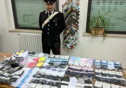 Agnone. I Carabinieri controllano e multano un venditore abusivo del napoletano.