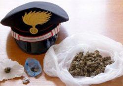 VAIRANO PATENORA. Marijuana in fase di essiccazione, semi ed attrezzature per il confezionamento delle dosi a casa di un pregiudicato del posto.