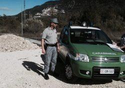 Colli al Volturno / Carpinone. Gestione e abbandono di rifiuti, denunce e sanzioni dai Carabinieri Forestali.