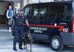 Pescolanciano / Carpinone. Controlli straordinari dei Carabinieri, denunce e sequestri: impiegata l'unità cinofila antidroga del Nucleo di Chieti.