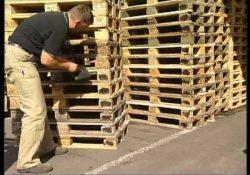 Venafro / Pozzilli. Ruba pedane in legno da un'azienda nella zona industriale: denunciata una persona.
