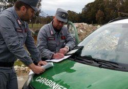 Monteroduni. Gestione illecita dei rifiuti e controlli agroalimentari, sanzioni dai Carabinieri Forestali.