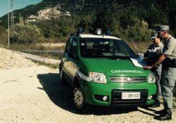 Isernia / Provincia. Gestione illecita dei rifiuti, scattano denunce da parte dei Carabinieri Forestali.
