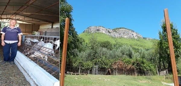 Roccavecchia di Pratella. Padre e figlio, Perito Agrario, imprenditori di pane e capre per accrescere…