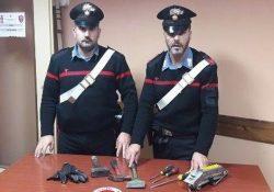 Isernia / Provincia. Controlli straordinari dei Carabinieri, denunce e sequestri: impiegata l'unità cinofila antidroga.