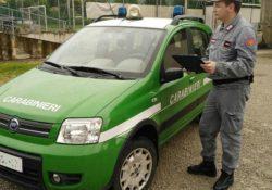 Venafro. Cacciavano fuori dagli orari consentiti: bloccati dai Carabinieri.