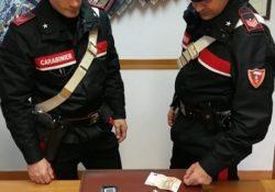 Isernia / Provincia. Carabinieri in azione nel contrasto alla droga: scatta un arresto, una segnalazione e sequestri.