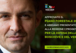 """PIETRAVAIRANO / VAIRANO SCALO. Approvato il Piano Forestale 2019, soddisfatto Magliocca: """"chiesti finanziamenti per oltre 2 milioni e 300mila euro per aprire cantieri""""."""
