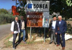 """Castelvenre / Torrecuso / Bonea. """"Città del vino"""" cresce sempre di più: dal lontano 1987 quanta strada è stata fatta."""