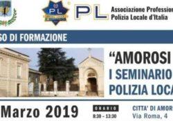 Amorosi. Un seminario di informazione e formazione per la polizia locale: domani in città promosso dall'associazione professionale polizia locale d'Italia.