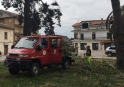 PIEDIMONTE MATESE. Gruppo Volontari di Protezione Civile in azione: rimossi residui legnosi in diversi punti della città.