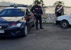 Venafro. I Carabinieri denunciano quattro persone per furto: tre giovani pakistani ed un salernitano.