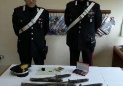 Venafro / Isernia. Intensa attività di controllo dei Carabinieri nel weekend: scattano denunce e segnalazioni alla Prefettura.
