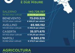 """Caserta / Provincia. Fondi per l'agricoltura, l'affondo del consigliere regionale Zinzi: """"Con questo governo regionale di centrosinistra passare da Campania Felix a Salerno Felix è un attimo""""."""