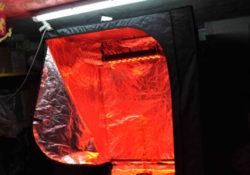 Telese Terme. Trasforma il garage in una serra per marijuana: arrestato 29enne.
