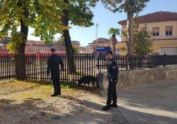 Sesto Campano. Prevenzione, vigilanza e controllo del territorio da parte dei Carabinieri: una persona arrestata.