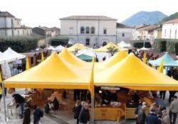 """Cerreto Sannita. Al via le """"Domeniche dell'Olio""""': viaggio tra sapori e tradizioni."""