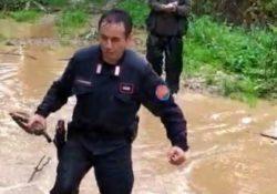 """SANT'ANGELO D'ALIFE / VAIRANO PATENORA. 74enne cacciatore si perde nei boschi in località """"Le Fontane"""": ritrovato dai Carabinieri Forestali."""