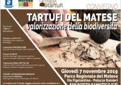 SAN POTITO SANNITICO. Tartufi del Matese, valorizzazione della biodiversità: oggi al Parco Regionale del Matese con ospite l'on. Nicola Caputo.