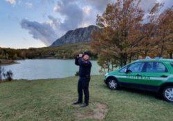 Pescopennataro / Colli al Volturno. Cercatore di tartufo sanzionato di 5mila euro dai carabinieri forestali.