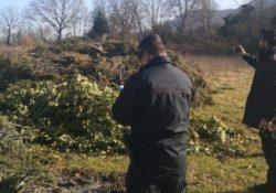 BAIA E LATINA / PIETRAMELARA. Area interessata da illecito smaltimento di rifiuti speciali provenienti da potature: sequestro dei carabinieri forestali.