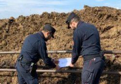 ROCCAMONFINA. Allevamento di bufale: sequestrata area sottoposta a illecito smaltimento di rifiuti speciali.