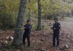 Chiauci / Carovilli. Tagli boschivi non conformi alle norme: tre persone multate dai carabinieri forestali.