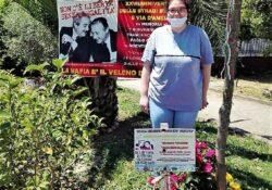 ALIFE. Dall'Albero della Pace messaggio di Benedetta per il 28° anniversario della Strage di Capaci.