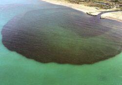 Caserta / Provincia. Il Consorzio Generale di Bonifica del Bacino Inferiore del Volturno pronto a sporgere denuncia per lo sversamento nell'Agnena.