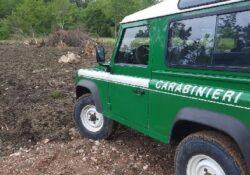 Carovilli. Abusivismo in area protetta: Carabinieri forestali denunciano imprenditore agricolo.