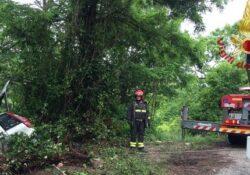 Venafro / Agnone. 40 interventi dei Vigli del Fuoco per caduta alberi, tetti divelti, danni di acqua ed incidenti stradali.