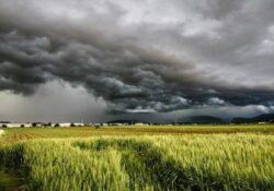 """Italia spezzata in due dalla pioggia: al nord disastri in campagne e centri abitati, al sud siccità, Anbi: """"urgono scelte concrete""""."""