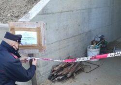 CAIAZZO / FORMICOLA. Sotto sequestro opere edilizie abusive in corso di realizzazione: operazione dei carabinieri forestale.