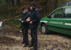 ROCCAROMANA / PIETRAMELARA. I carabinieri forestale sottopongono a sequestro due aree interessante da spandimento dei liquami zootecnici in periodo non consentito.