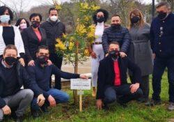 Telese Terme. 8 marzo, il Comitato Telesia dona mimose alle pazienti delle strutture sanitarie telesine.
