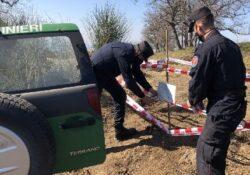 Caserta / Provincia. Monte Tifata, i Carabinieri forestali pongono fine ad attività di disboscamenti abusivi.