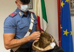 Isernia / Provincia. Ladro di profumi esce dal negozio senza pagare: bloccato dai carabinieri un uomo.