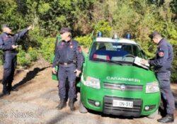 Roccamandolfi. Abusivismo in ara protetta: i carabinieri forestali denunciano due uomini.