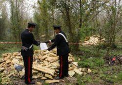 Isernia / Provincia. Vasta operazione dei Carabinieri a tutela dell'ambiente: 10 persone denunciate, 6 discariche abusive sequestrate.